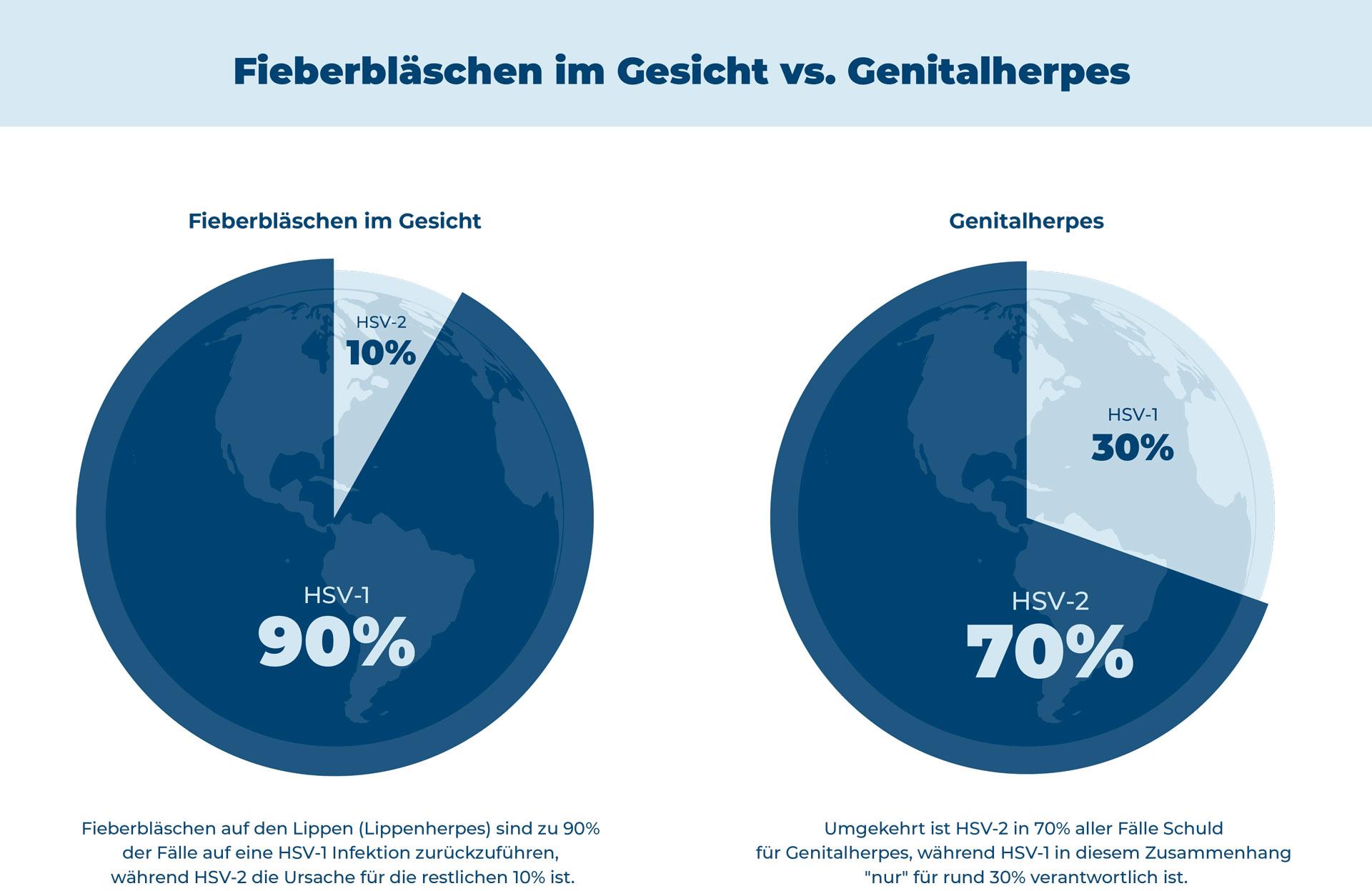 Infografik - Vergleich von HSV-1 und HSV-2 zur Ursache von Fieberbläschen und Genitalherpes